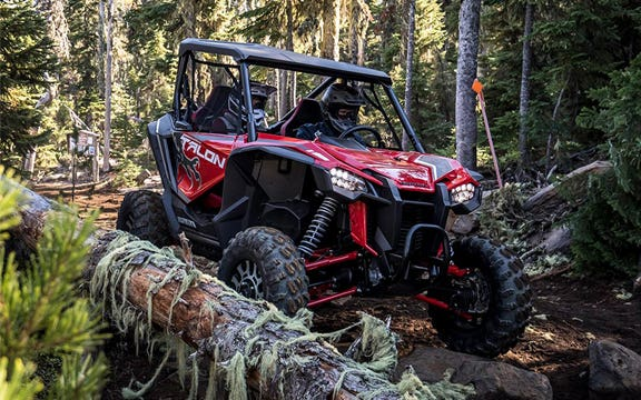 The Cargo Bed View of the Honda Talon